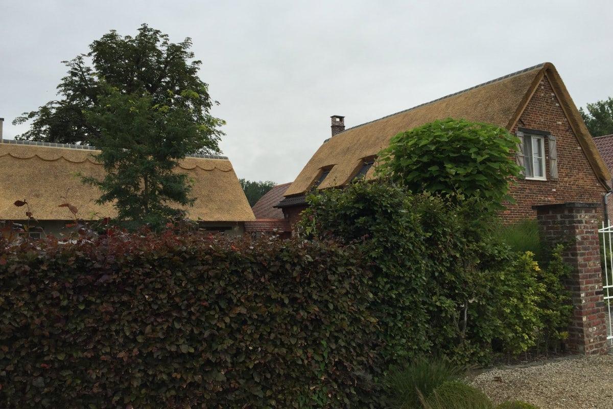 rieten dak keramische nokvorst