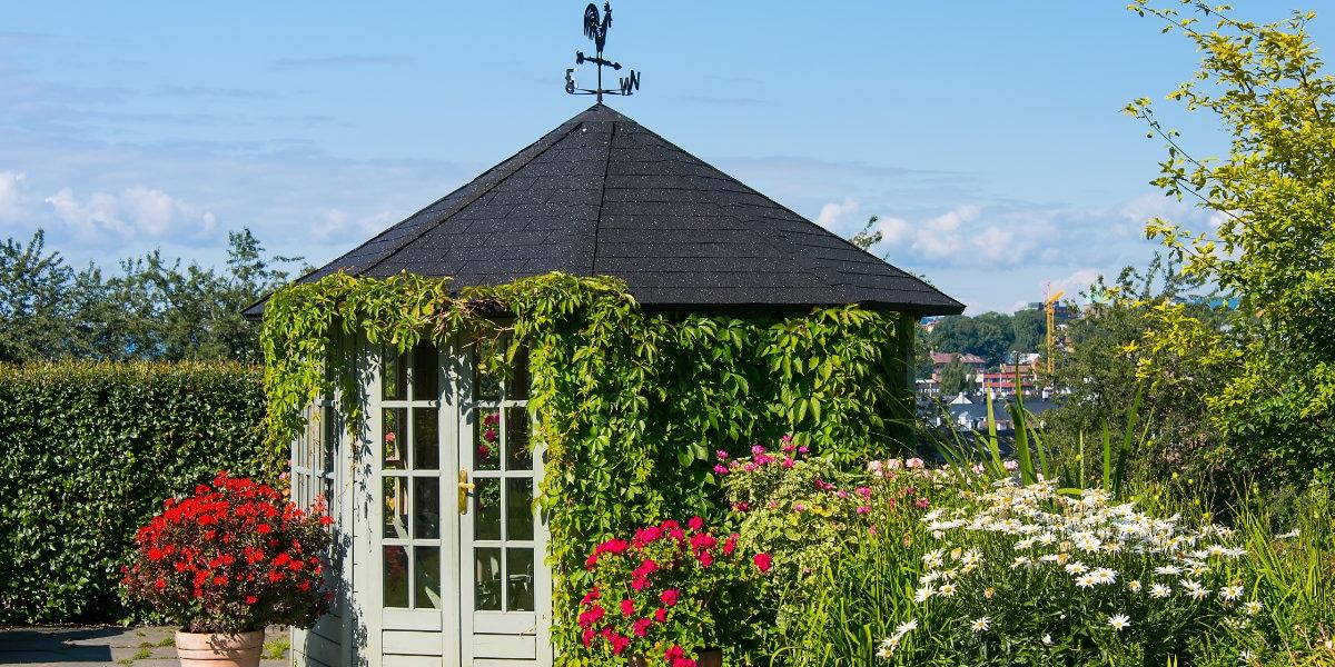 tuinhuis dak